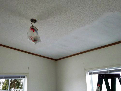 Work has begun on the guest room ceiling.